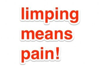 Limping Means Pain